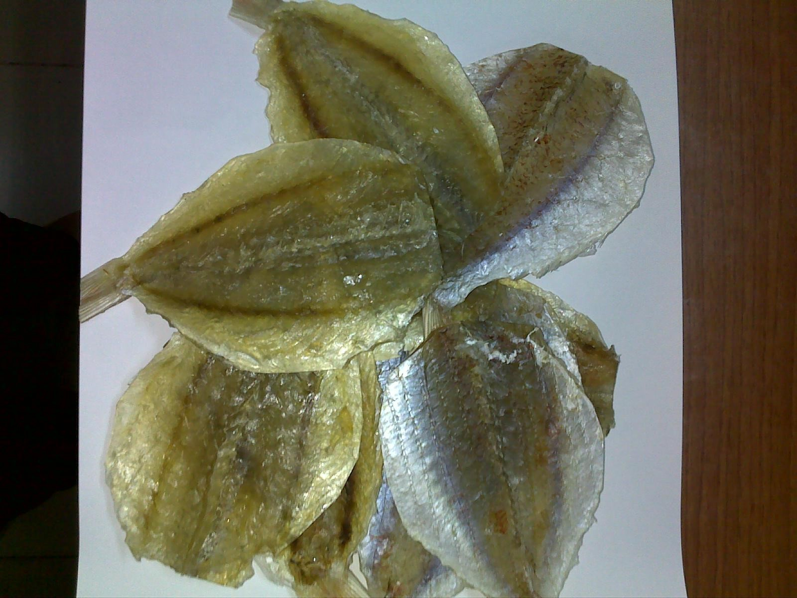 HC13234 - Dried Golden Threadfin bream  fillet